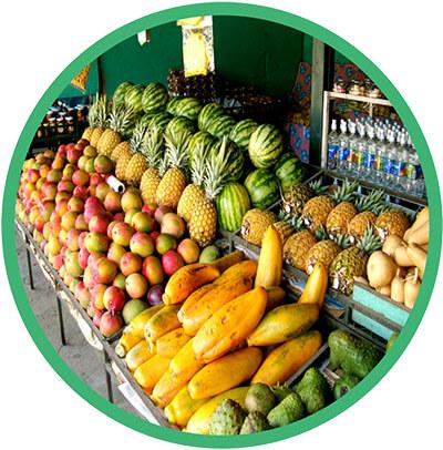 samara-beach-costa-rica-tropical-fruit